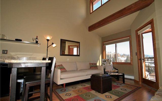 Buffalo Ridge Condo 205 - photo 10