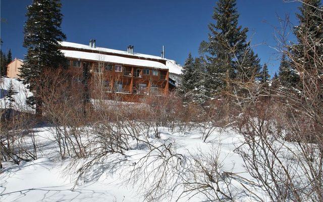 Buffalo Ridge Condo 205 - photo 22