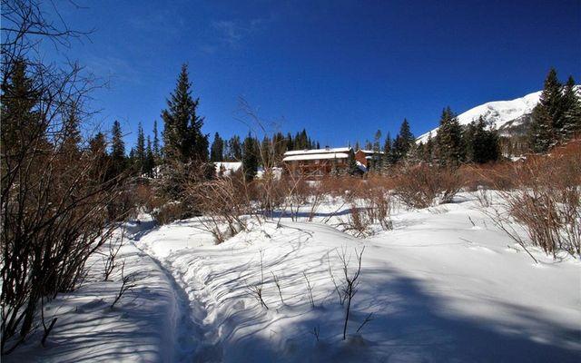 Buffalo Ridge Condo 205 - photo 29