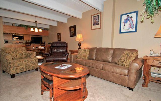 Wheeler House Condo 203 - photo 20