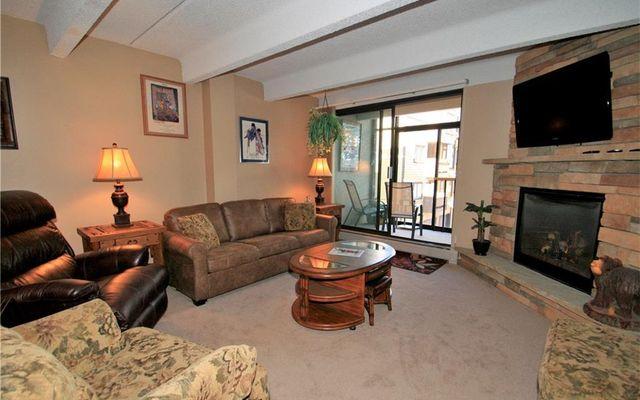 Wheeler House Condo 203 - photo 3