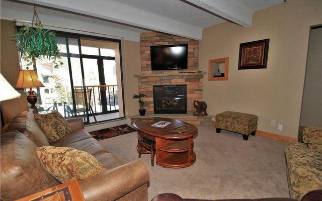 Wheeler House Condo 203 - photo 4
