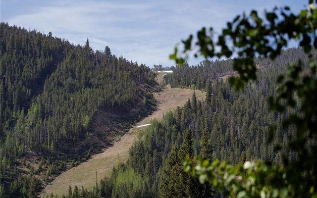 Tenderfoot Lodge 2603 - photo 13