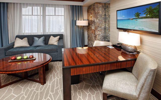 Ritz Residential Suites # hs655 - photo 3