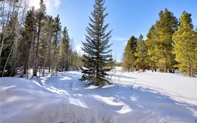 85 Elk Lane - photo 33