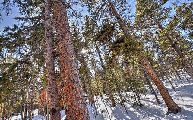 85 Elk Lane - photo 34