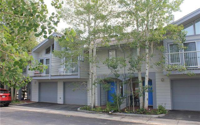 316 E La Bonte Street E B DILLON, CO 80435