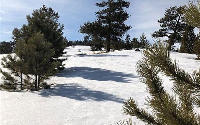 1566 Navajo Trail - photo 5