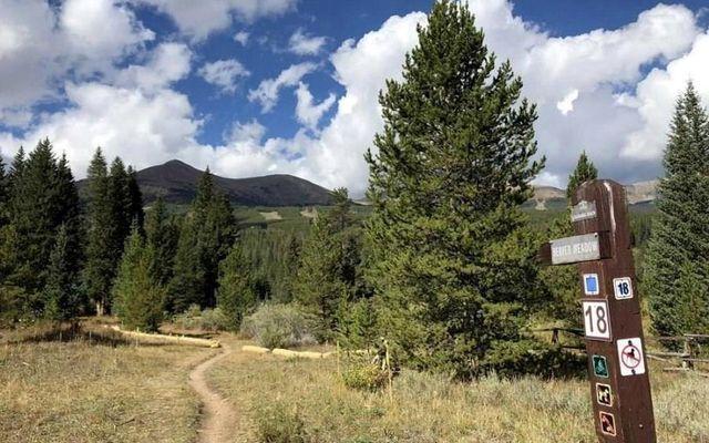 196 Cucumber Creek Road - photo 21