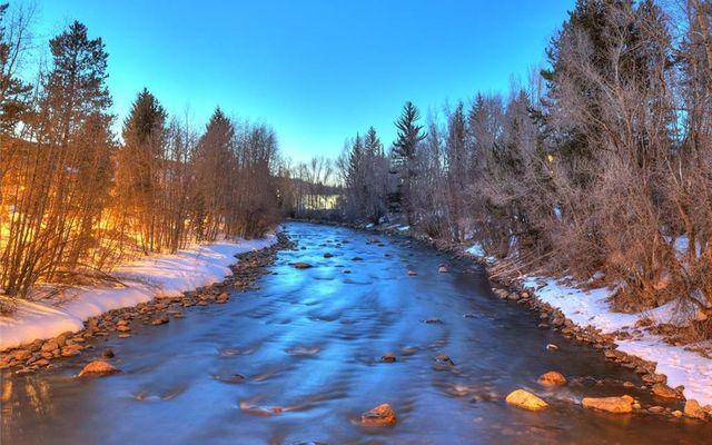 Rivers Edge Condo 26 - photo 34