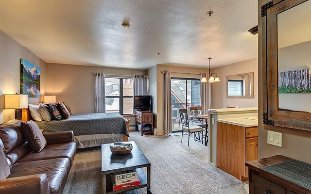 100 S Park Avenue S #407 BRECKENRIDGE, CO 80424