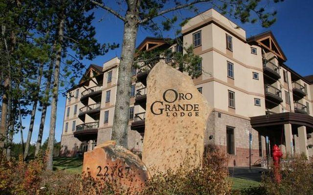 Oro Grande Lodge 305 - photo 23