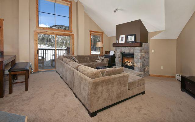 Buffalo Lodge And The Dakota Condos 8414 - photo 11