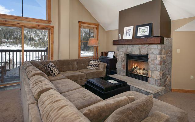 Buffalo Lodge And The Dakota Condos 8414 - photo 13