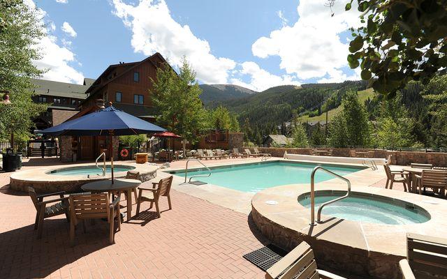 Buffalo Lodge And The Dakota Condos 8414 - photo 22