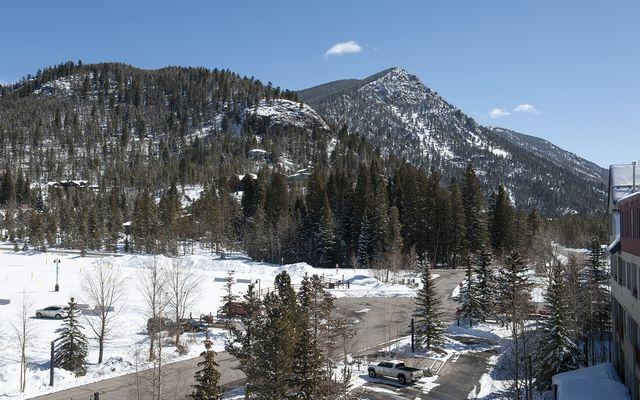 Buffalo Lodge And The Dakota Condos 8414 - photo 8