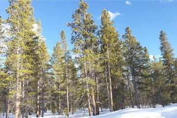 1851 Mountain Pines Court LEADVILLE, CO