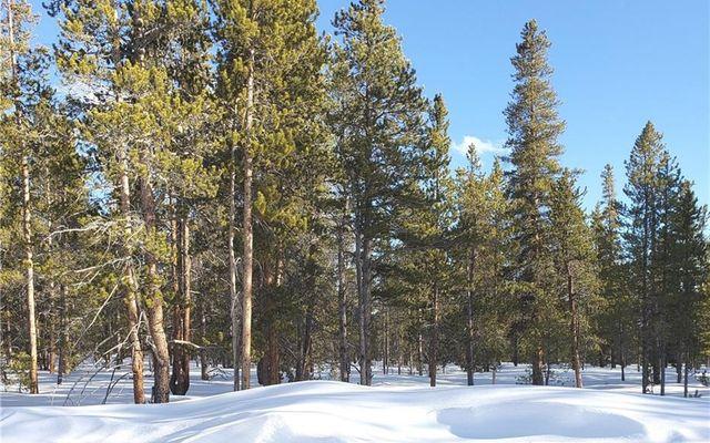 1851 Mountain Pines Court - photo 4
