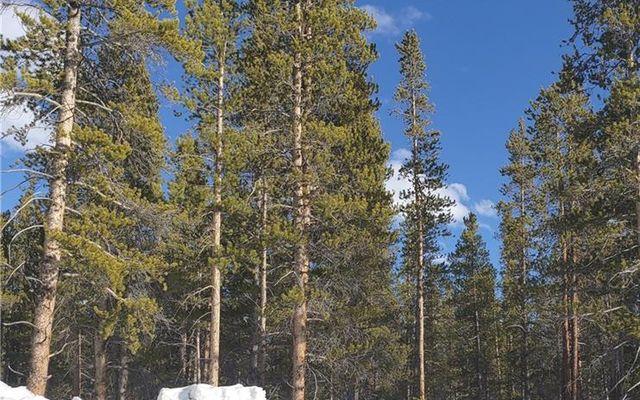 1851 Mountain Pines Court - photo 6