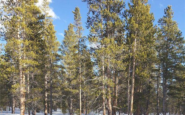 1851 Mountain Pines Court - photo 7