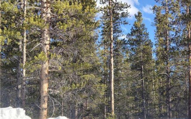 1851 Mountain Pines Court - photo 8