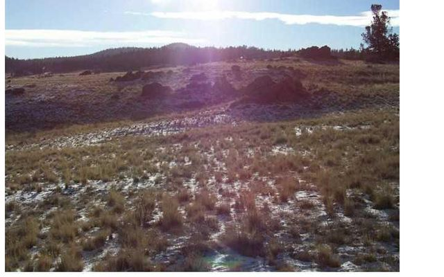 357 Hopi CIRCLE COMO, Colorado 80432