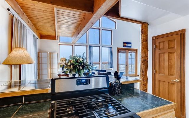 1169 Palmers Drive SILVERTHORNE, CO 80498