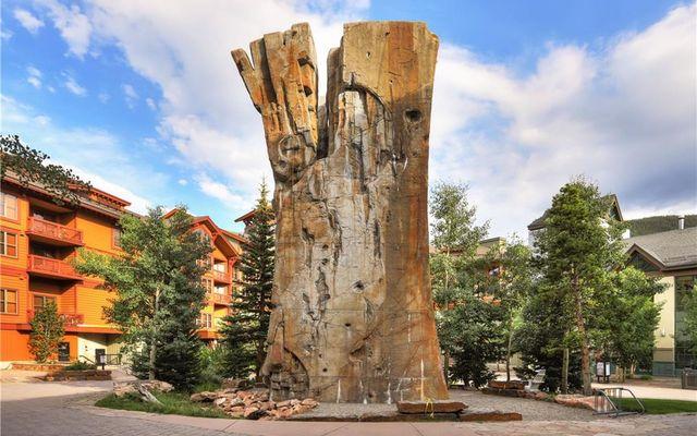 Spruce Lodge Condo 398/498 - photo 8