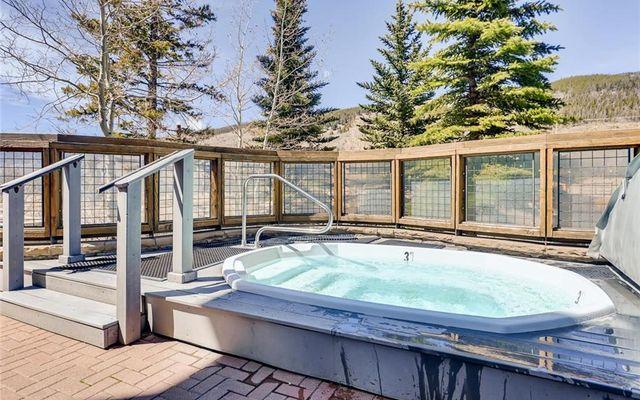 Buffalo Lodge And The Dakota Condos 8340 - photo 22