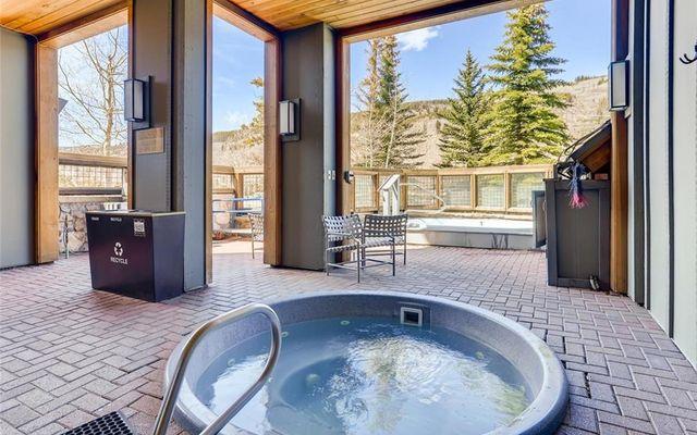 Buffalo Lodge And The Dakota Condos 8340 - photo 23