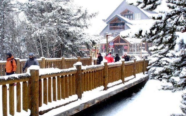 Buffalo Lodge And The Dakota Condos 8340 - photo 28
