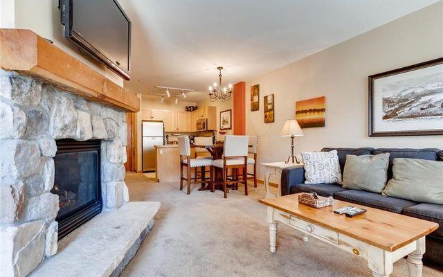Buffalo Lodge And The Dakota Condos 8340 - photo 8