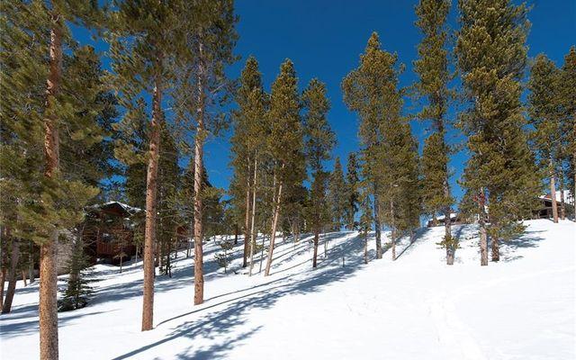239 Snowflake Drive - photo 13
