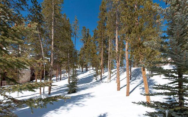 239 Snowflake Drive - photo 14
