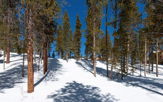 239 Snowflake Drive - photo 15