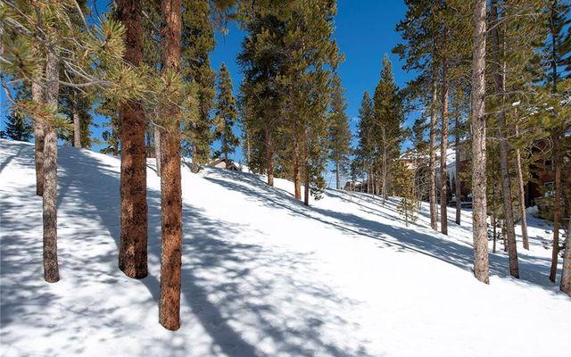 239 Snowflake Drive - photo 16
