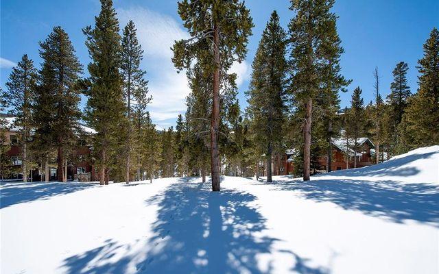 239 Snowflake Drive - photo 4