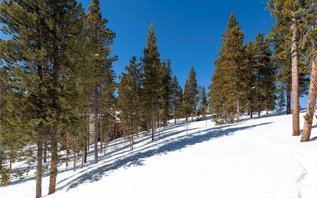 239 Snowflake Drive - photo 5