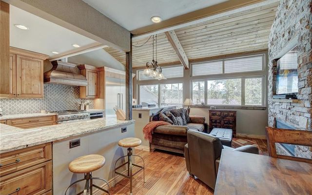 166 S Fuller Placer Road #2 BRECKENRIDGE, CO 80424