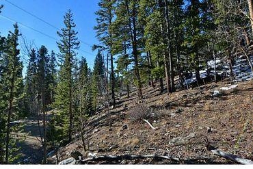 345 Bauxite LANE ALMA, Colorado - Image 18