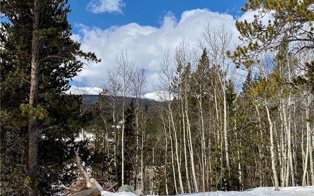 Lot 60, GLACIER RIDGE Road ALMA, CO 80420