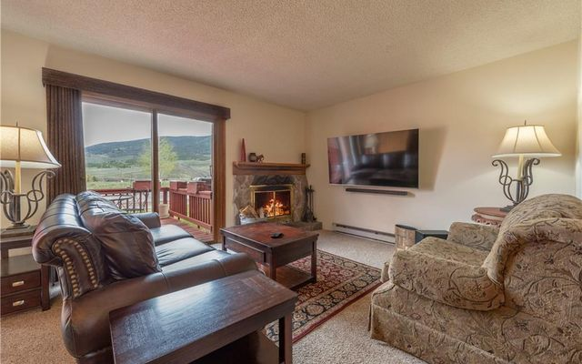 250 Cove Boulevard #3 DILLON, CO 804358827