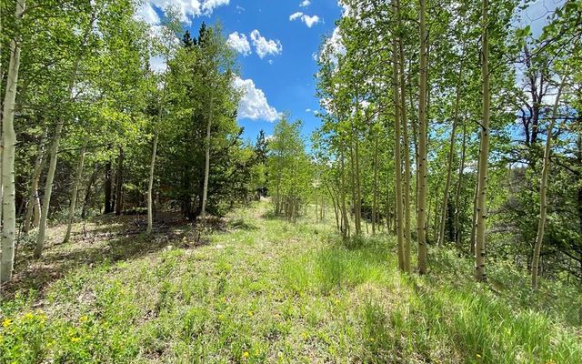 Lot 20 Aspen Street ALMA, CO 80420