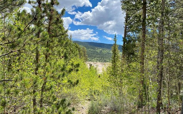 Lot 30 Aspen Street ALMA, CO 80420