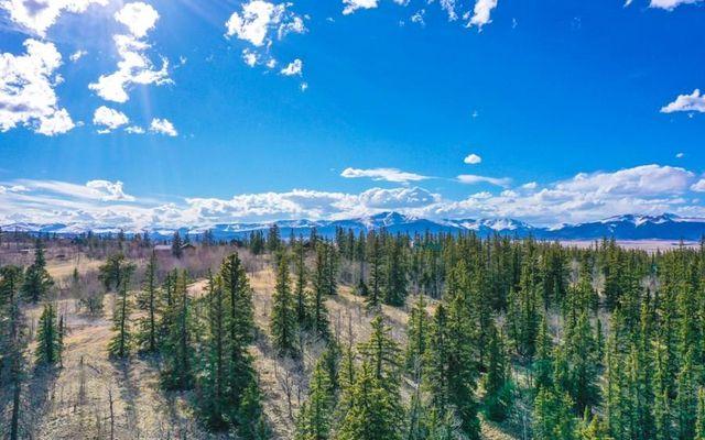 1121 Teton Trail - photo 29