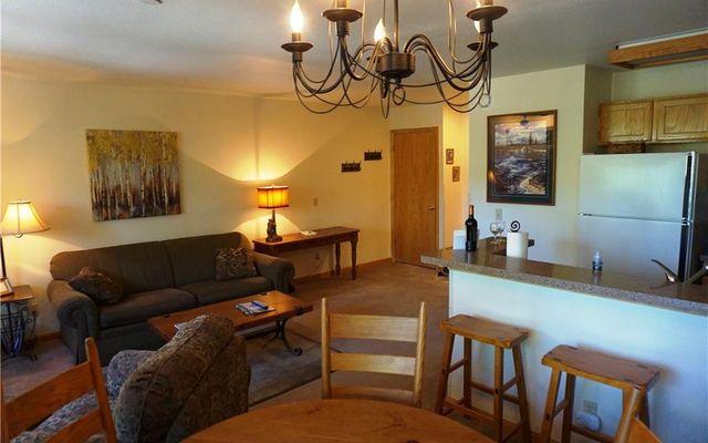 River Mountain Lodge Condo 122 - photo 8