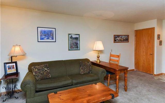 River Mountain Lodge Condo 122 - photo 9