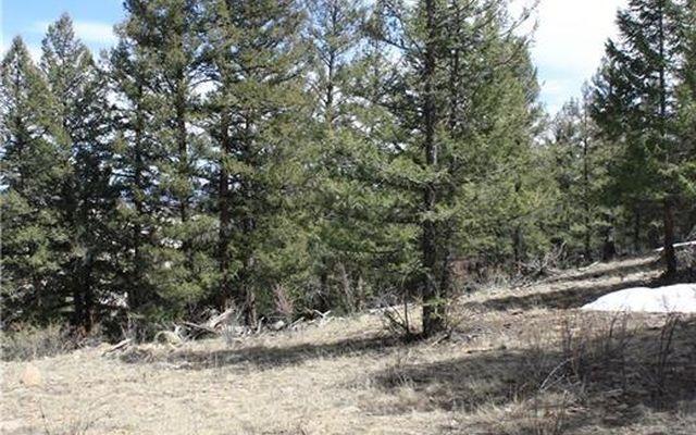 565 Middle Fork Vista - photo 7