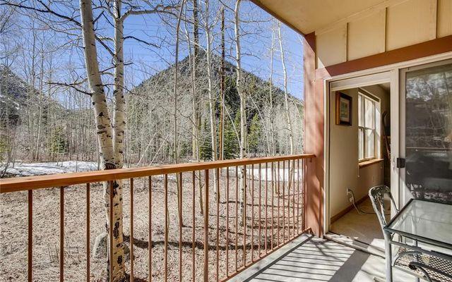 Lodge At Riverbend Condo 102 - photo 31