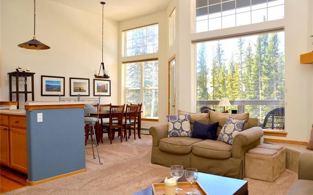 91499 Ryan Gulch Road A3 SILVERTHORNE, CO 80498